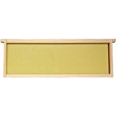 bee-hive-frame-assembled-6-1-4-in-yellow