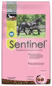 Sentinel-SafeStart