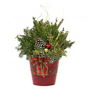 holiday-decorative-tin-planter-red-8-inch