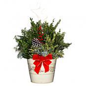 holiday-decorative-tin-planter-white-8-inch