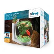Elive Betta Bowl White_3Dfront