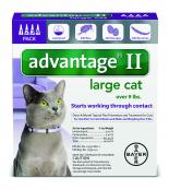 Advantage_4pk_LargeCat_Front