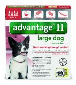 Advantage_4pk_LargeDog_Front