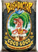 Cocoloco2CF