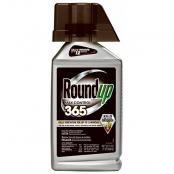 round-up-max-control-365-concentrate-32-oz