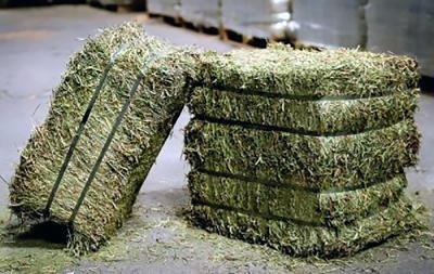 compressed-hay