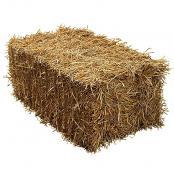 straw-bale-40-lb