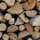 firewood-bin