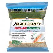 jonathan-green-black-beauty-solar-green-grass-seed