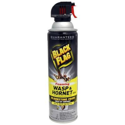Black Flag Foaming Wasp & Hornet Killer 14 oz. - Temporarily out of stock