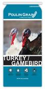 Turkey-Gamebird