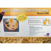 baby-chick-starter-home