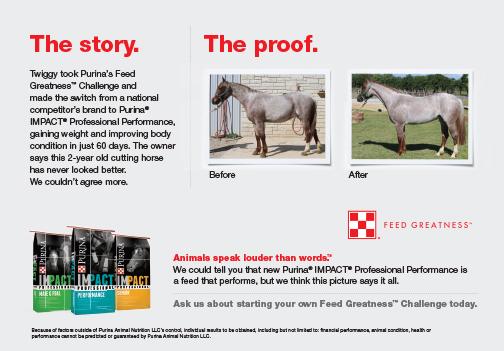 Impact Professional Horse Feed
