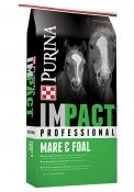 IMPACT-Pro-Mare-Foal